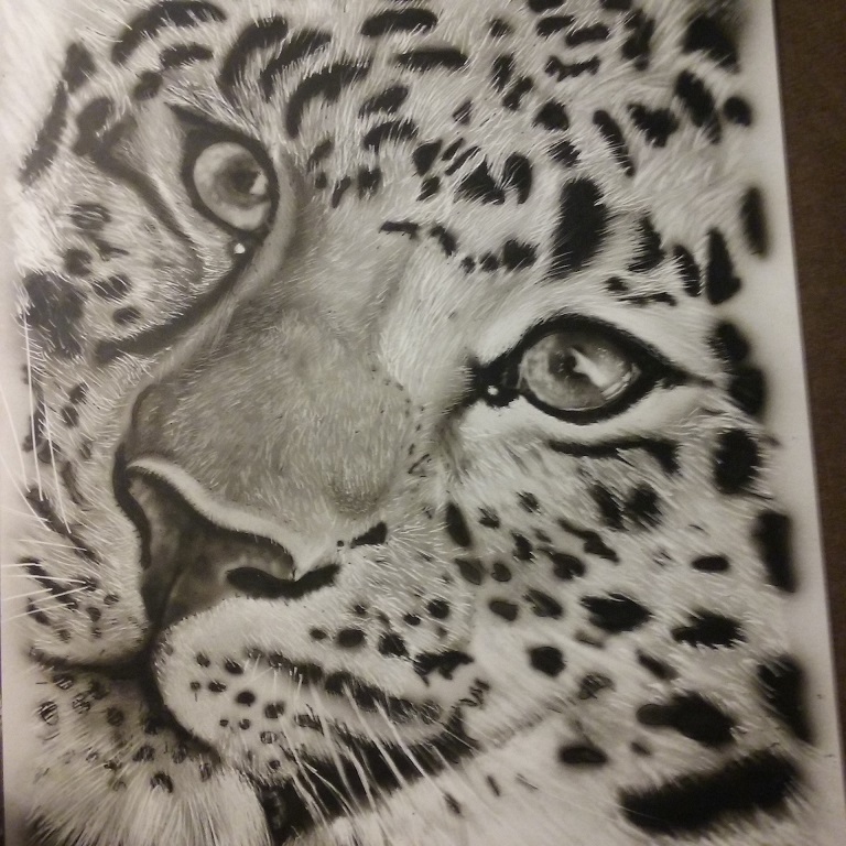 2nd try at leopard after 3years