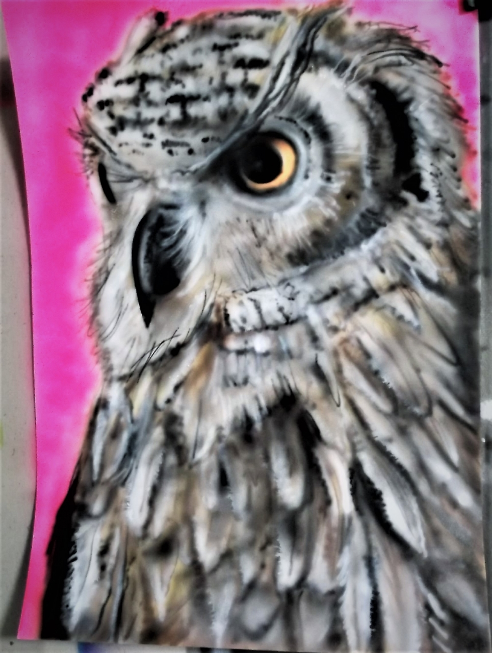 Owl 1 on A4 card