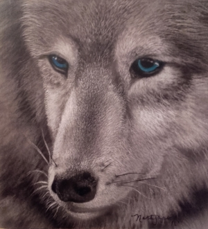 Wolf from VisualRealm