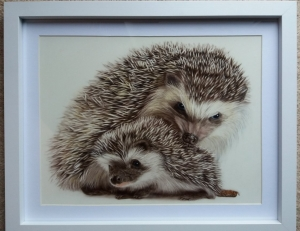 Hedgehog and young