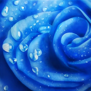 Blue rose with water